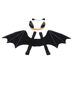 Bat Wings Dress Up Kit